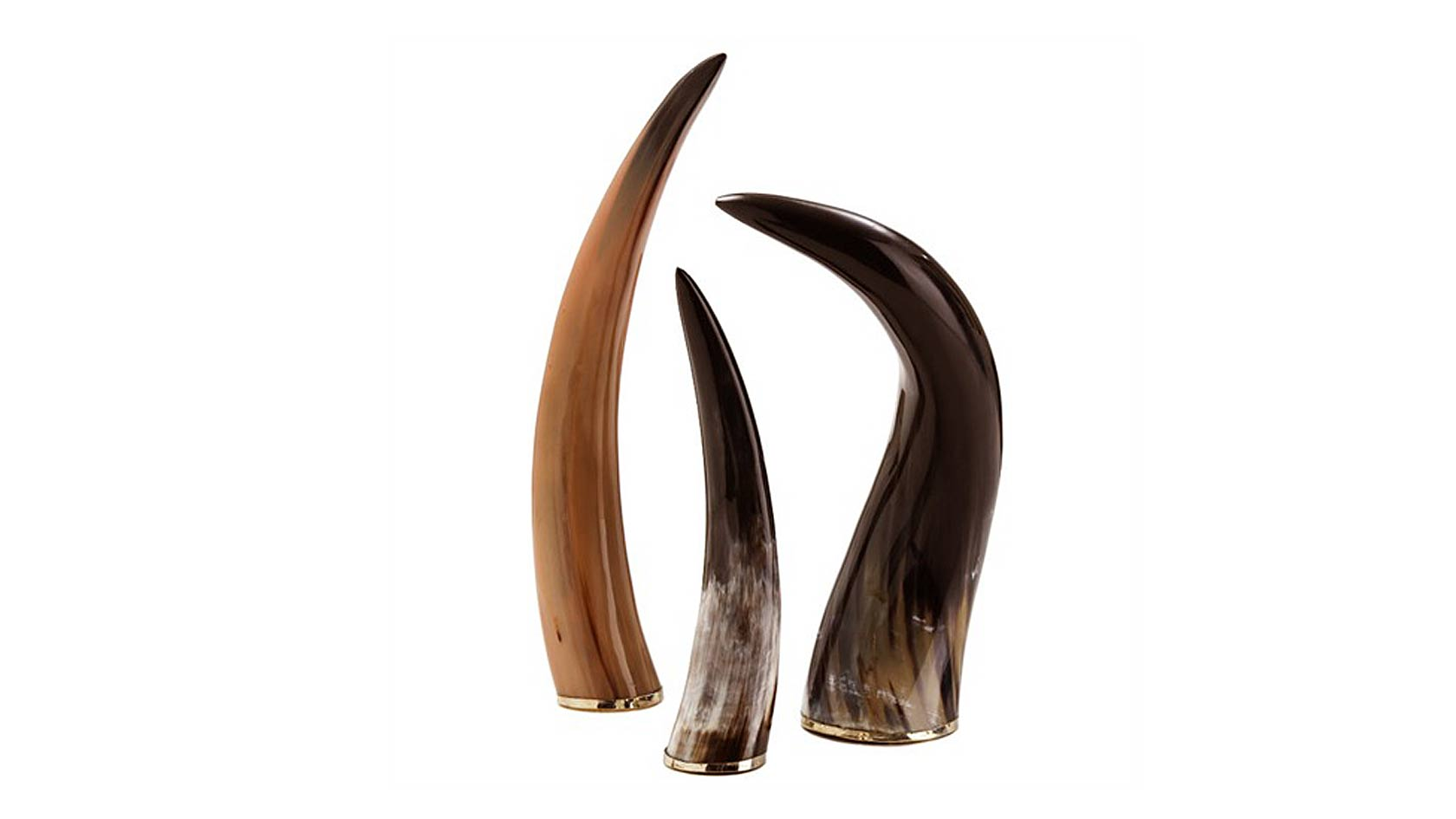 Authentic Horns, Set of 3