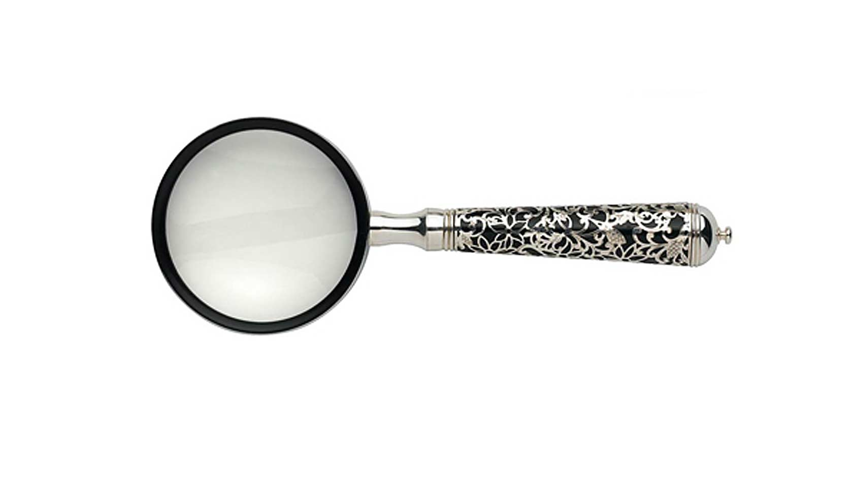 Insolent Magnifying Glass